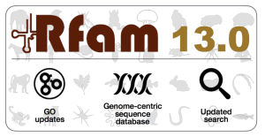 rfam-13.0